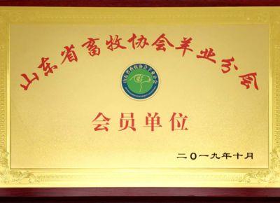 點(dian)擊查看詳細信息<br>標題︰省畜牧協會羊(yang)業分會會員 閱讀次數︰811